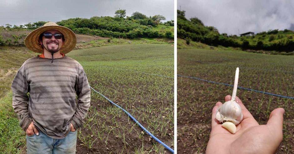 Agricultores ticos como Productos Quirós se enfocan en dar ajo criollo, de alta calidad, a sus clientes, dijo Ricardo Quirós, propietario. Richard Blaser/La República.