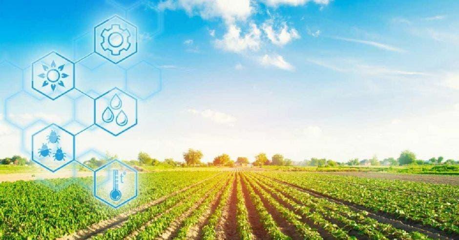 Tecnología aplicada al agro
