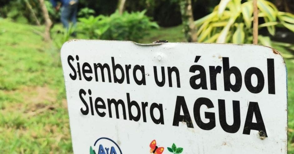 un letrero blanco que dice en letras negras siembre un árbol siembra agua