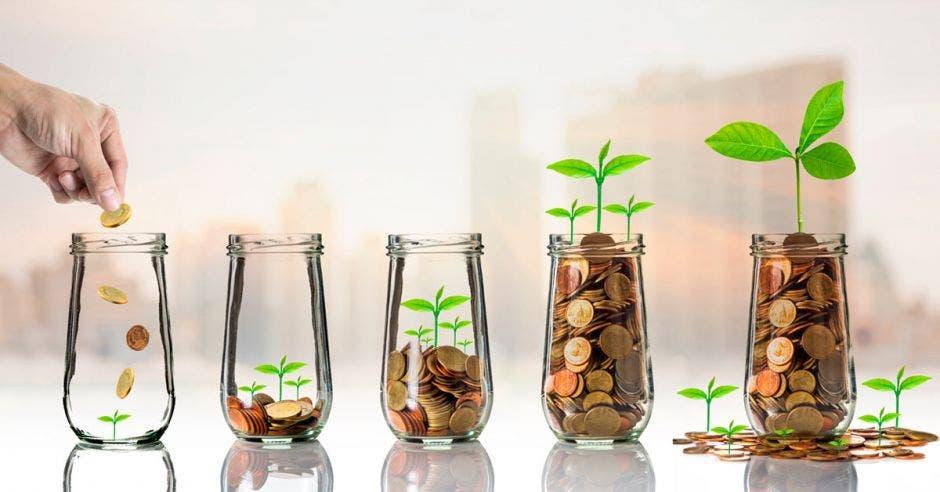 envases de vidrio con monedas en su interior y plantas creciendo