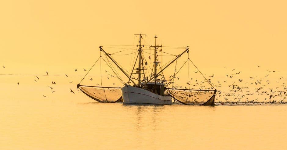 Un buque de arrastre capturando peces