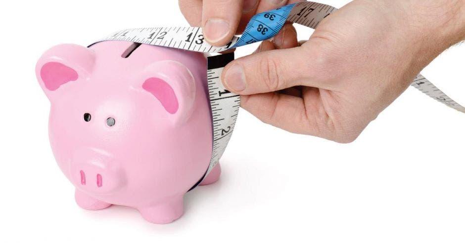 Cerdo de alcancía con cinta métrica