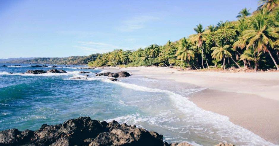 montezuma playa