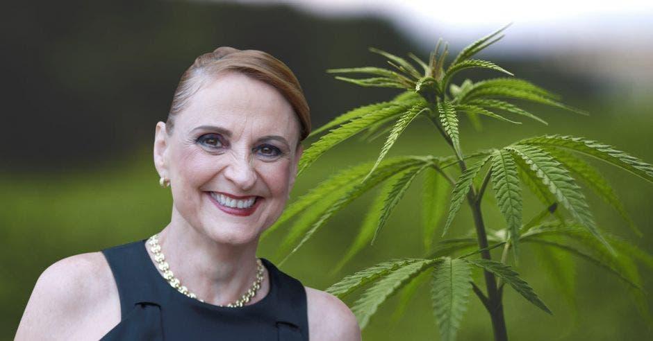 un mujer sonríe junto a una planta de marihuana