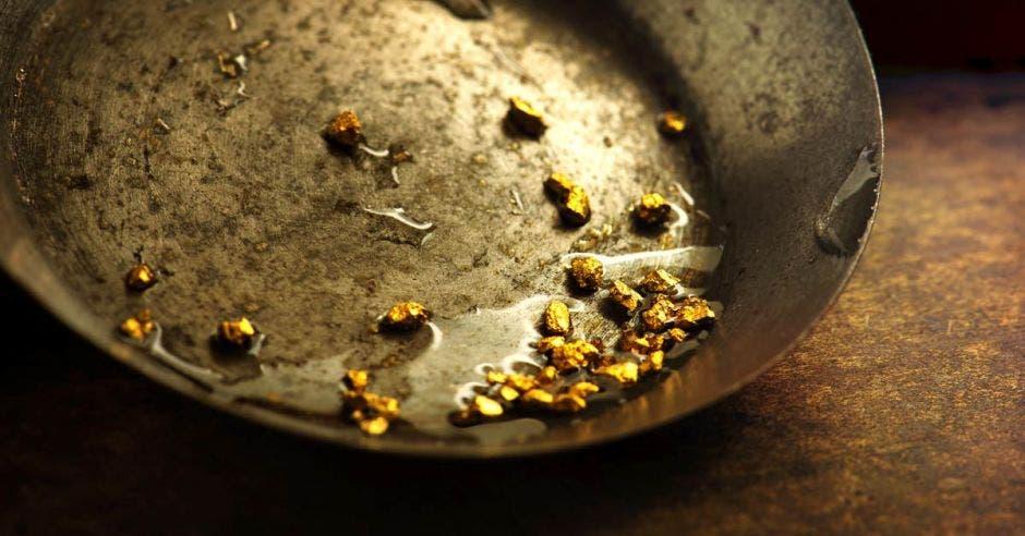 una palangana metálica con pepitas de oro adentro