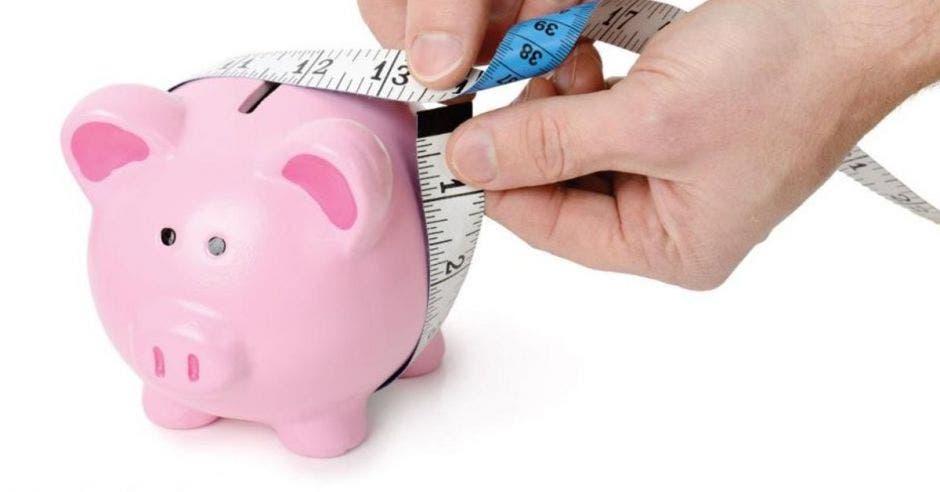 Alcancía de cerdo con cinta métrica