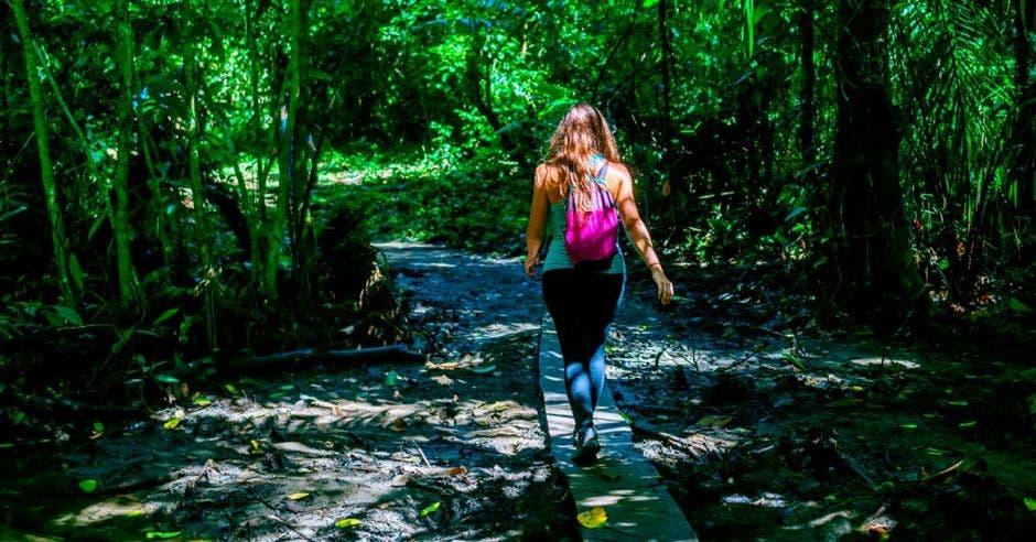 Mujer cruzando un pequeño río sobre una plancha de madera en el Parque Nacional Corcovado, Costa Rica