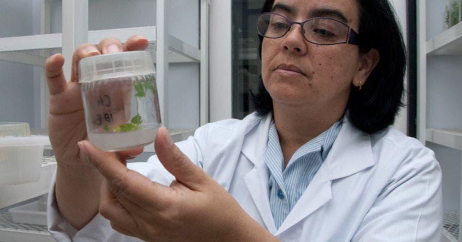 Dra. Rosaura Romero, Presidenta del comité organizador del foro virtual STEM en Costa Rica