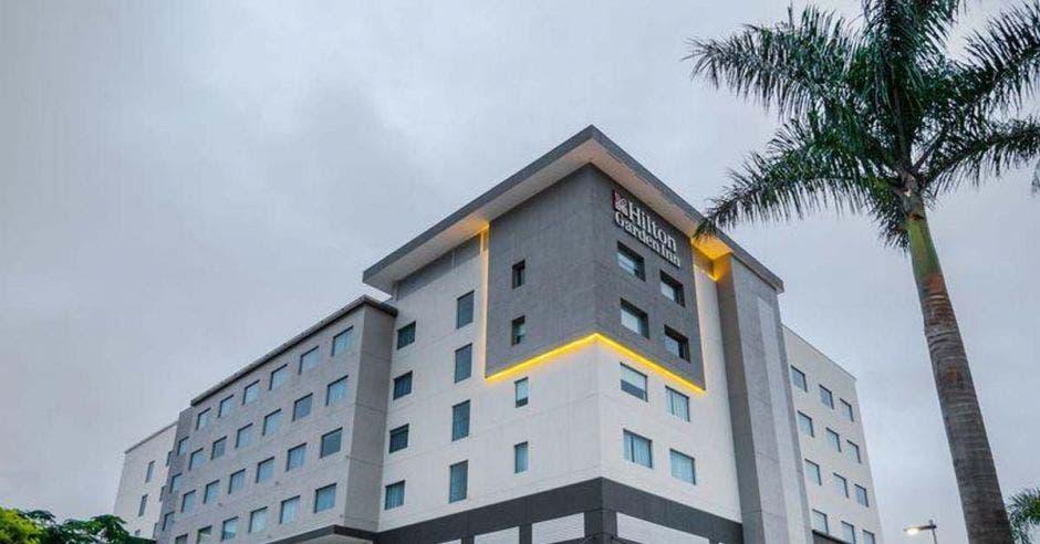 Fachada de un hotel con una palmera en frente