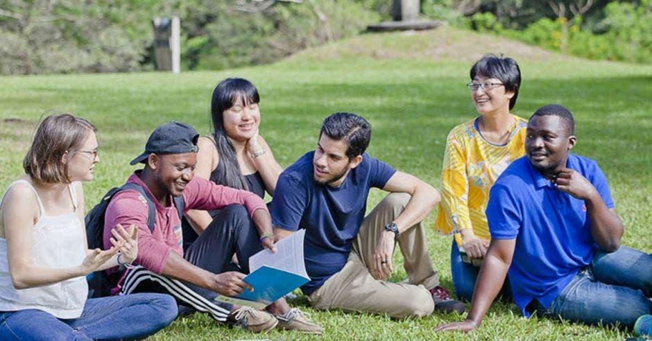 jóvenes estudiantes sentados en el pasto