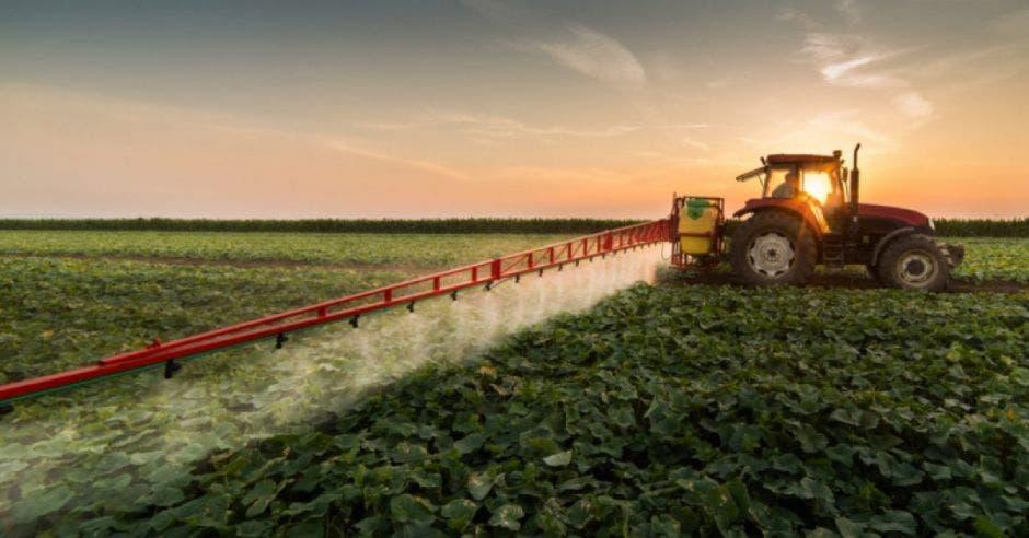 Agricultor trabajando el campo