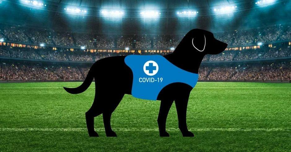 perro dibujado en un estadio