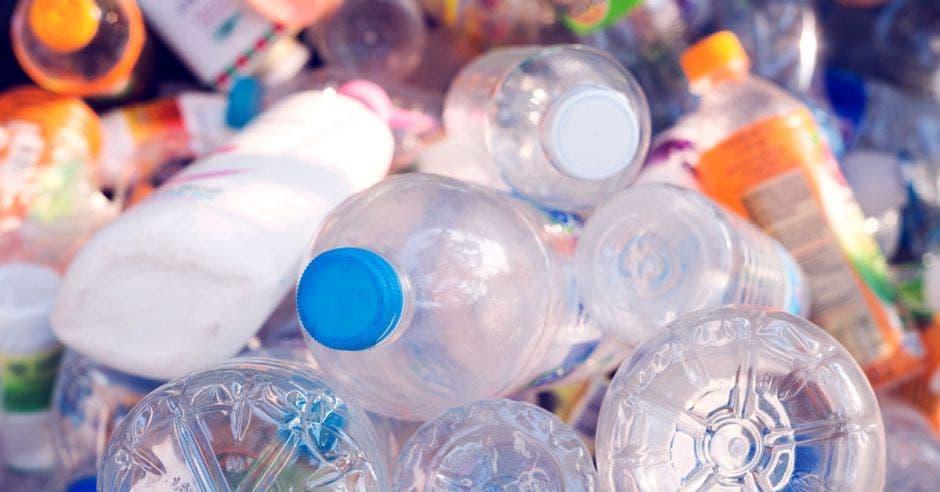 un conjunto de botellas plásticas con tapas de distintos colores