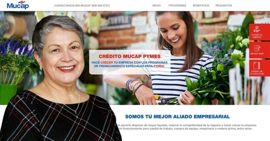 Mujer frente a diseño de sitio web