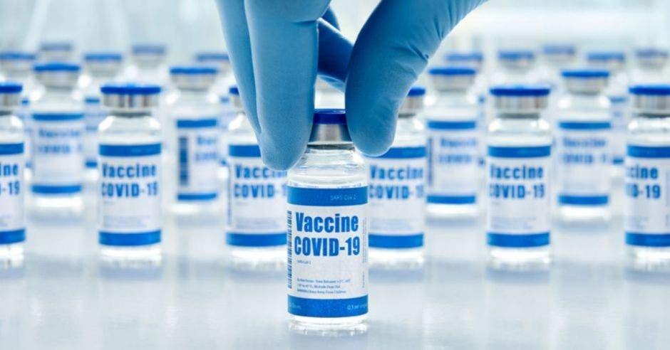 mano con guante azul sosteniendo un frasco con la vacuna contra el covid-19 con más frascos atrás
