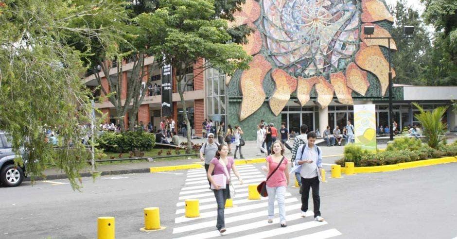estudiantes cruzando un paso peatonal en una universidad