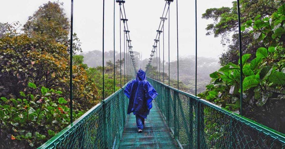 Puente verde en altura. Vegetación lo rodea.