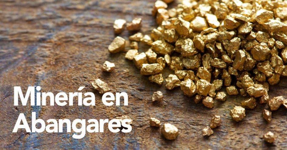 pepitas de oro en una mesa metálica