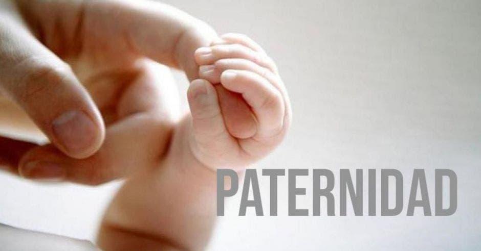 mano de adulto sosteniendo dedos de bebé con la palabra paternidad al lado