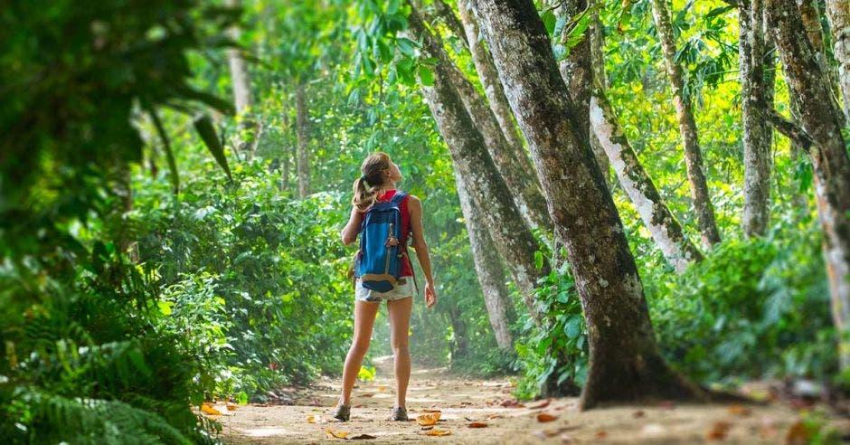 joven turista en la naturaleza