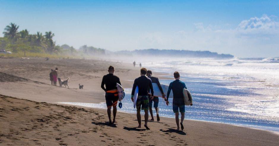 un grupo de hombres con tablas de surf recorre la playa