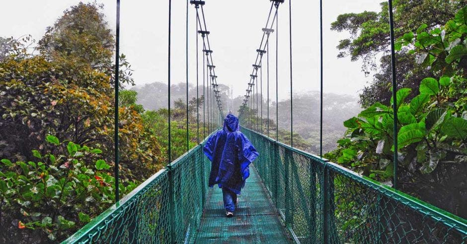 una mujer camina por un puente colgante en medio del bosque nuboso
