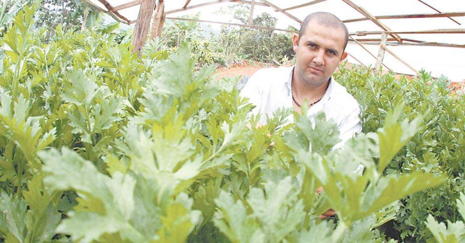 Rojas es uno de los beneficiarios del programa Pronamype, un fideicomiso del Ministerio de Trabajo