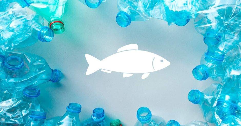 un pez en medio de círculo de botellas de plástico