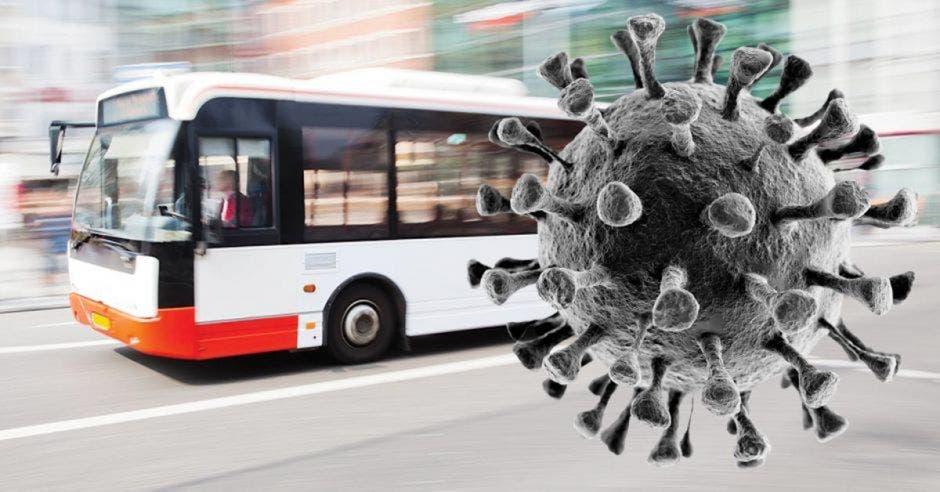 Covid en buses