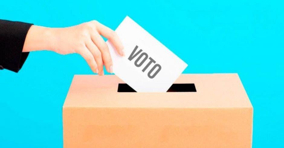 dibujo de mano metiendo papel en urna electoral