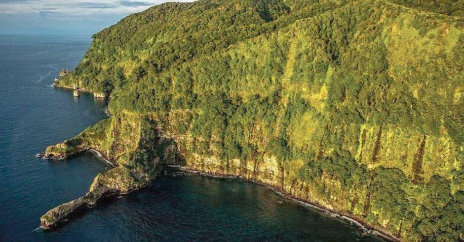una enorme península llena de vegetación