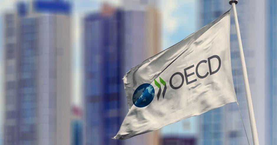 Bandera de la OCDE ondeando