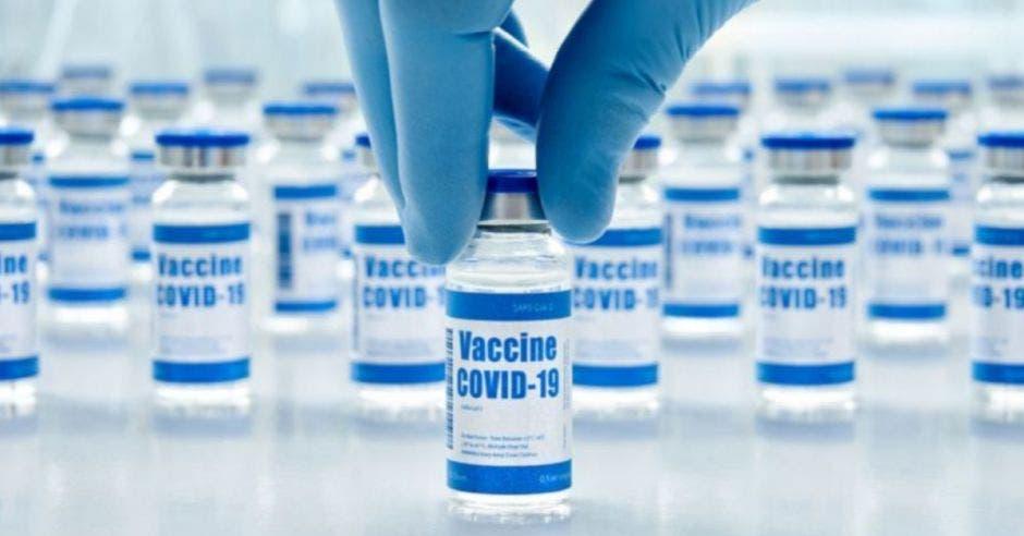 Foto de dosis de vacunas, un hombre con guante azul trata de tomar una dosis