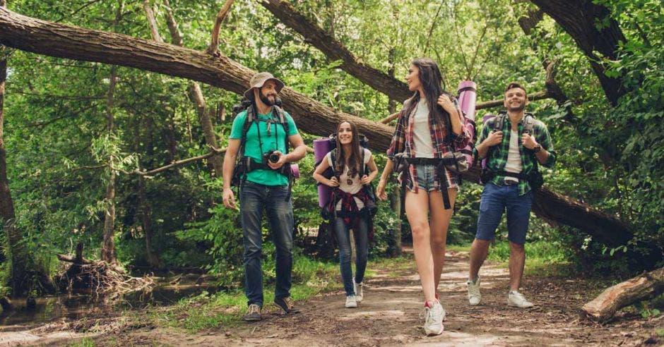 un grupo de turistas pasea por un sendero en un parque natural