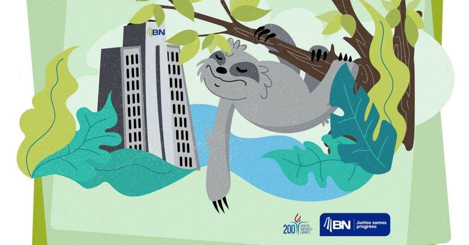Arte de un oso perezoso en rama y Banco Nacional de fondo