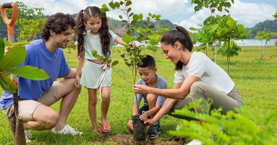 Familia sembrando árboles