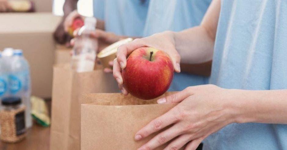 bolsas de papel con alimentos dentro
