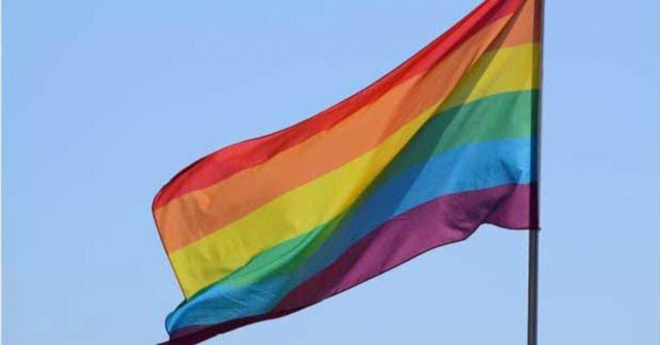 bandera de la diversidad ondeando