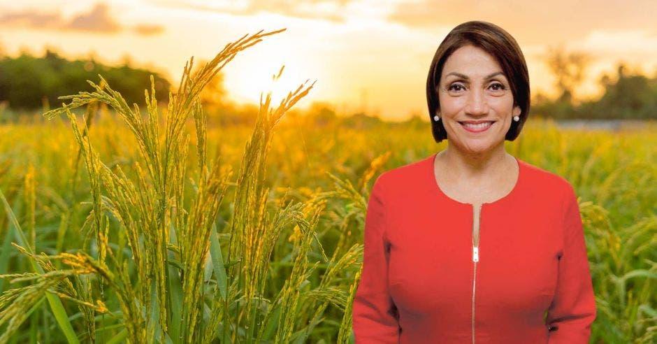 una mujer blanca de traje rojo y pelo corto sobre un fondo de plantaciones de arroz