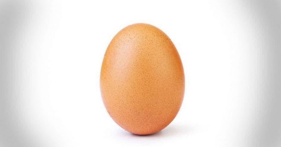 un huevo sobre un fondo blanco