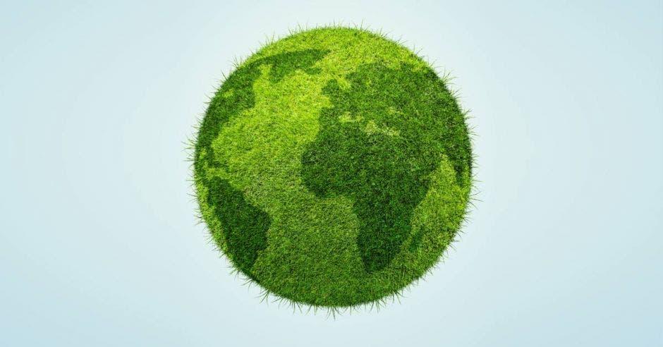 Planeta verde con árboles