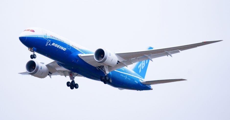 un avión azul con ribetes blancos. Boeing 787.