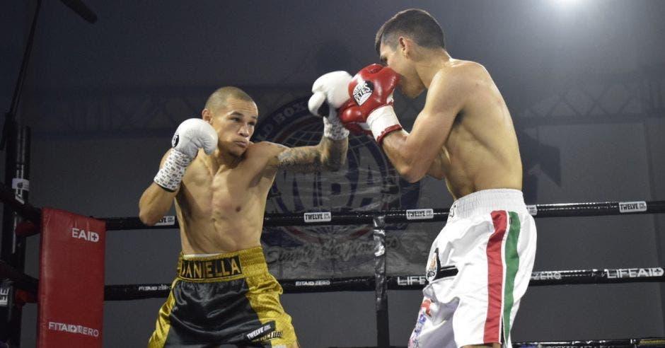 boxeo David medallita