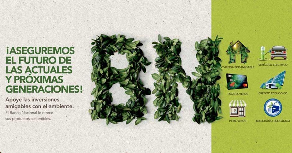 BN logo con productos ecológicos