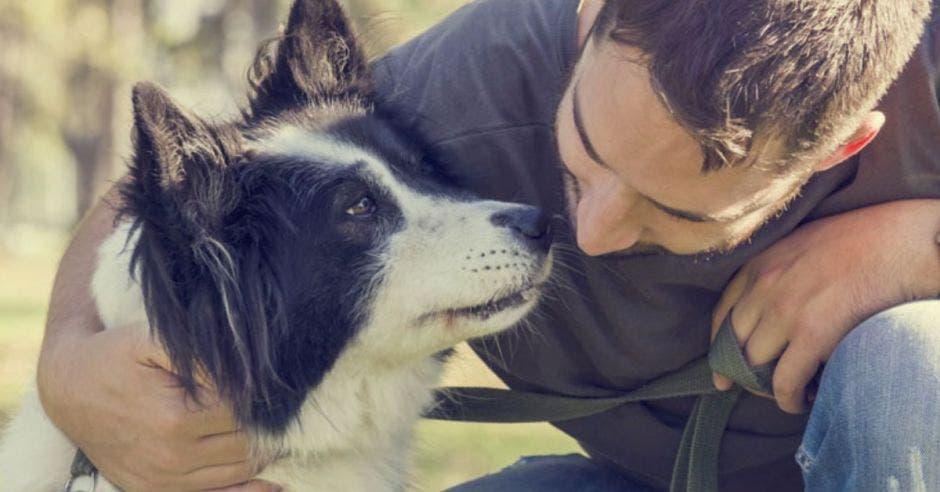 perro y persona muy cerca uno del otro