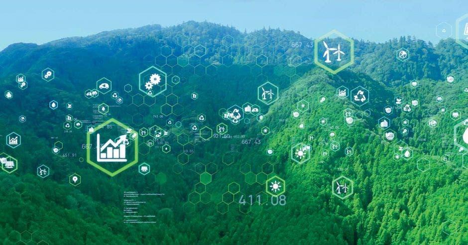 imagen ilustrativa de inversiones en tecnologías verdes. Bosque y concepto de tecnología interconectada.