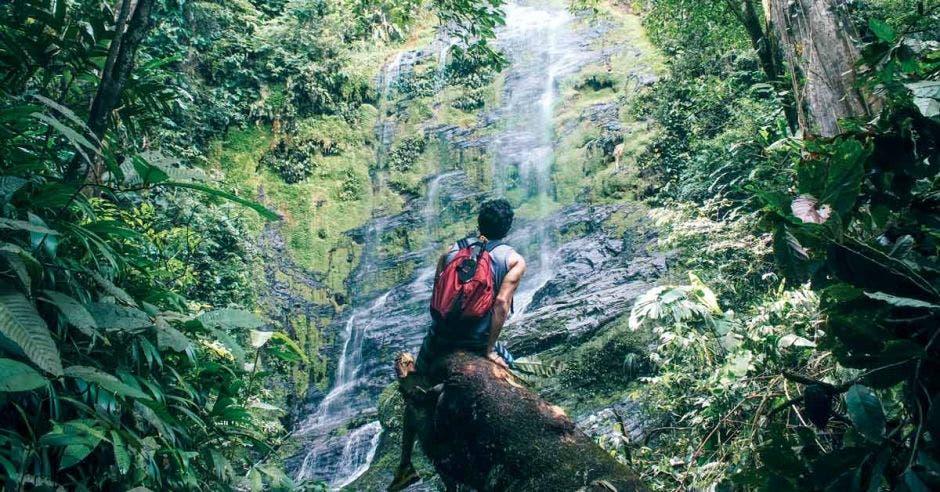 un hombre con una mochila roja en medio de un bosque