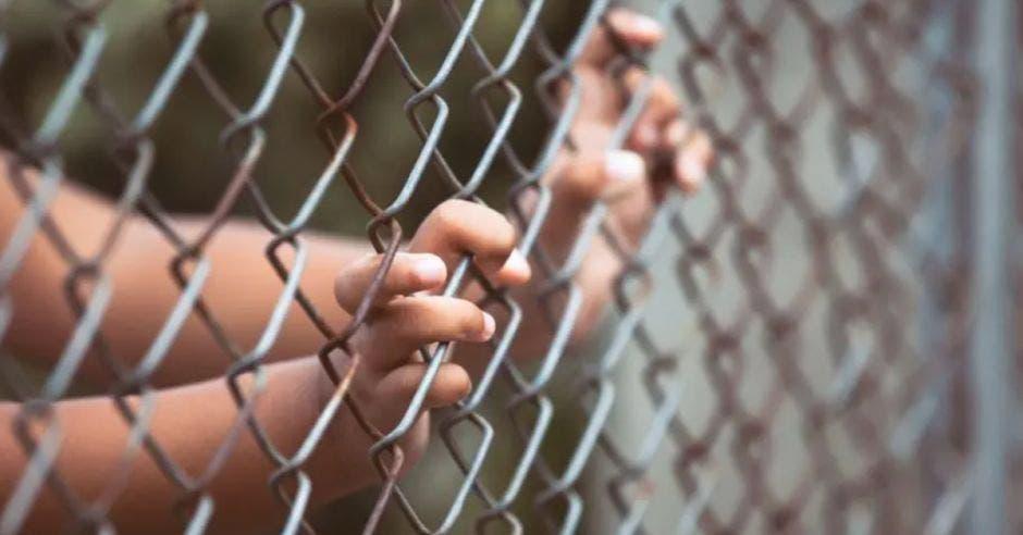 manos de un niño detrás de una reja