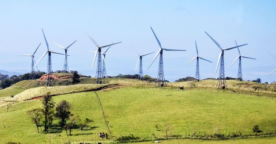 un conjunto de turbinas eólicas en un campo verde