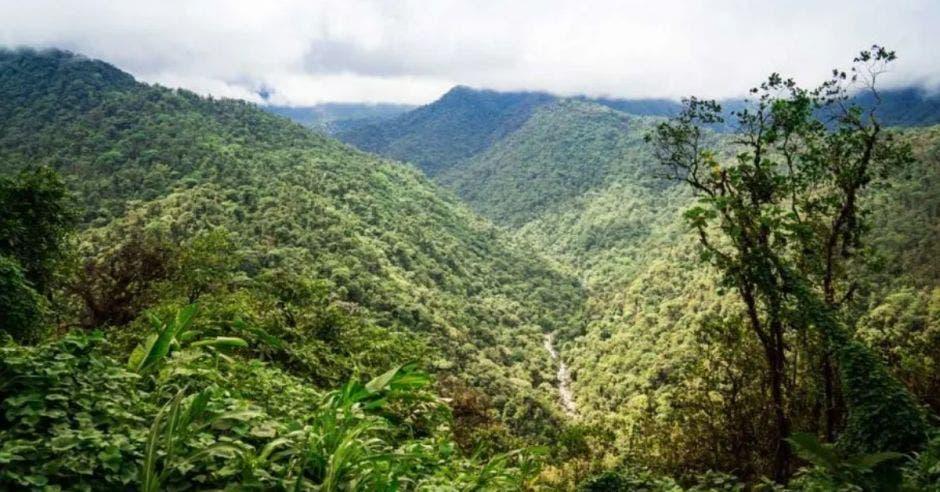 paisaje de un valle